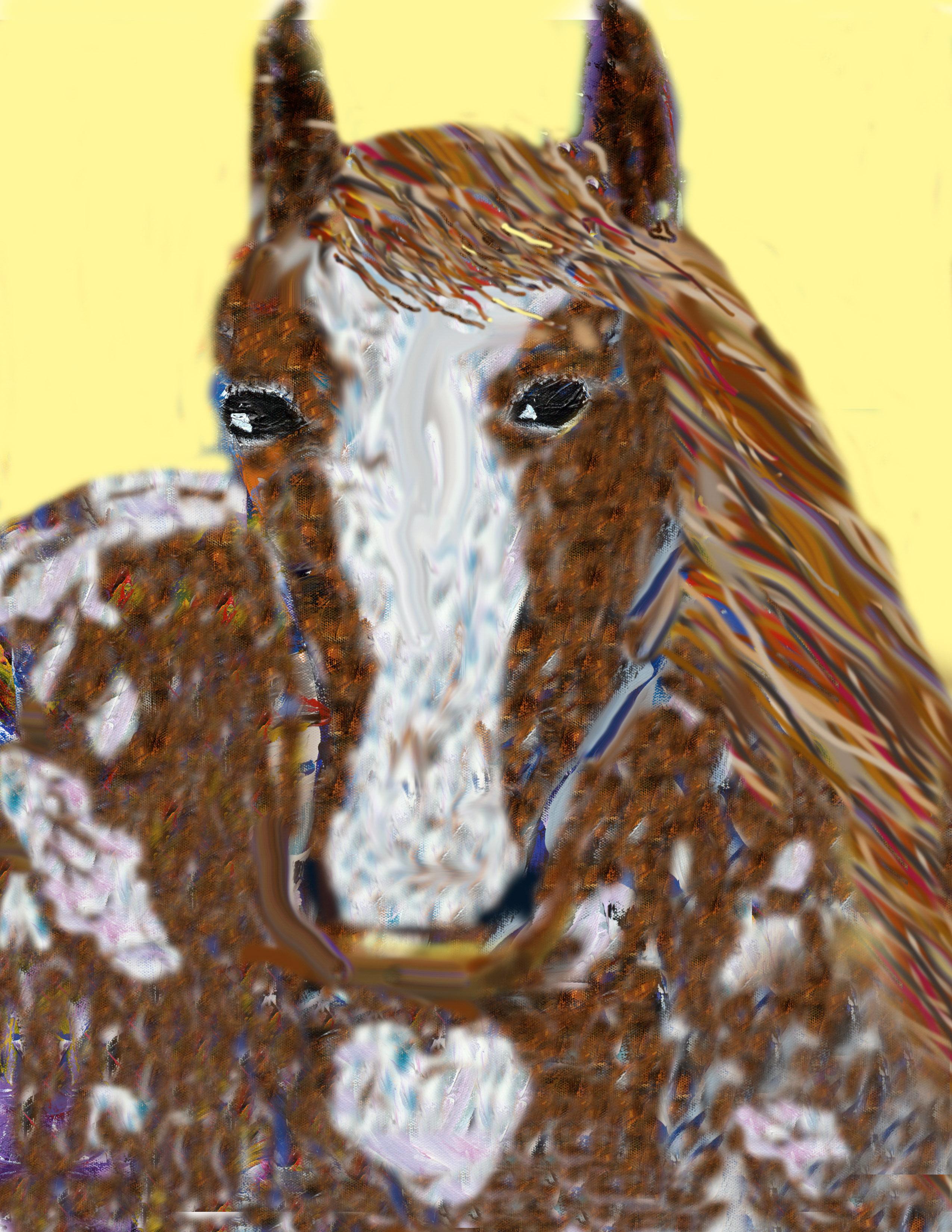 Two Horses Metallic, 1/18/11, 5:17 PM, 8C, 6000x8000 (0+0), 100%, Repro 1.8 v2, 1/25 s, R123.4, G98.8, B120.0