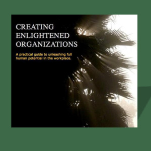 Creating Enlightened Organizations