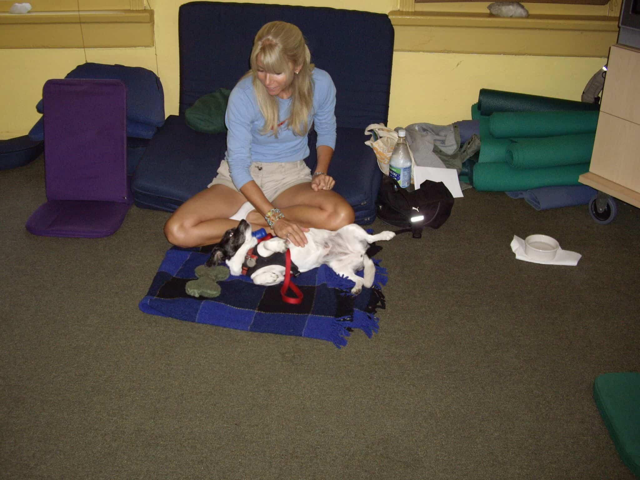 Canine Massage Class