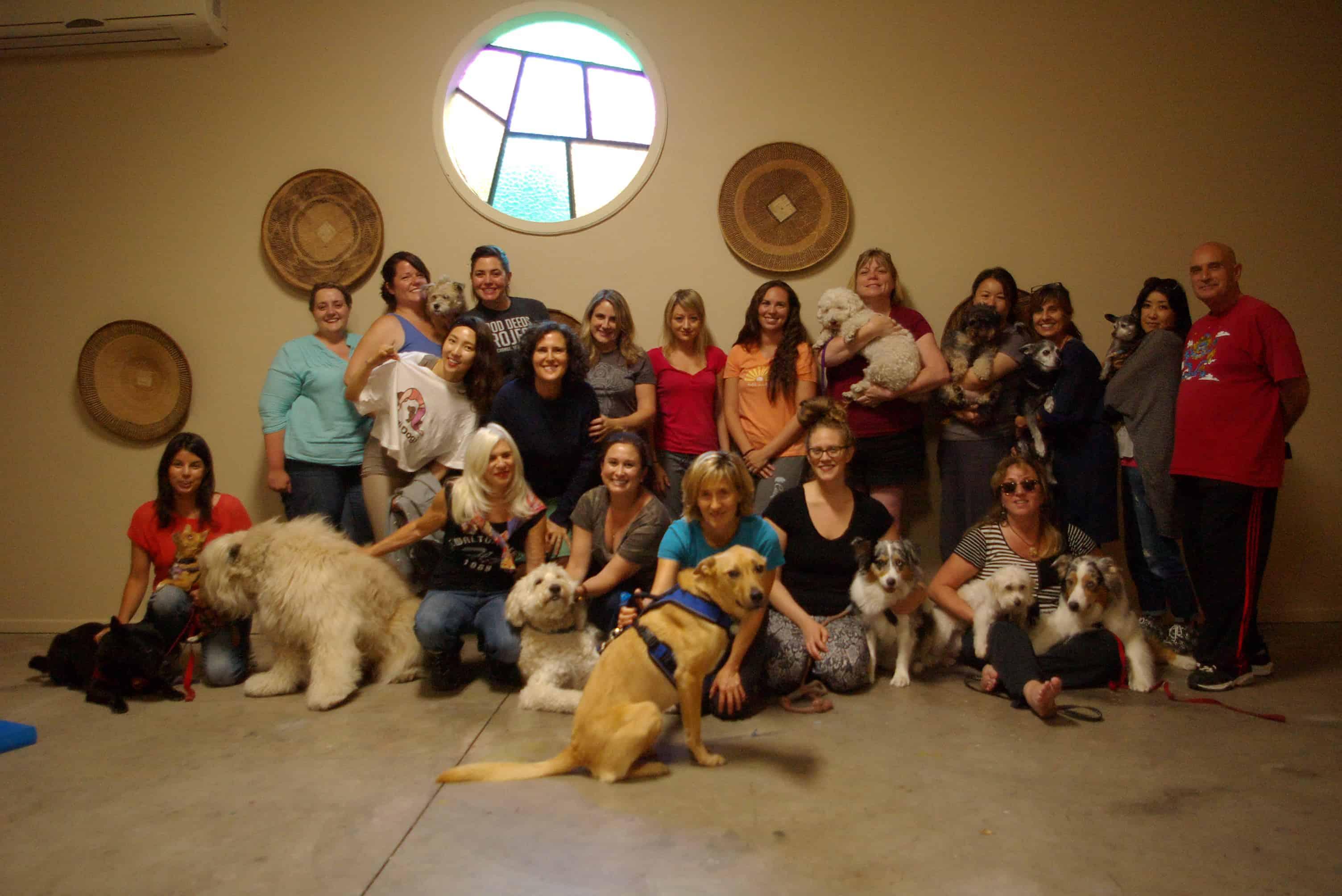 Dog Massage Class Portrait