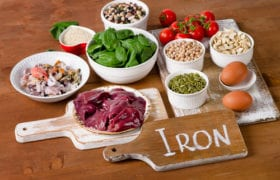 nutraphoria foods rich in iron online nutrition course