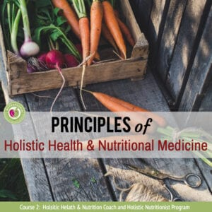 holistic nutrition course nutraphoria