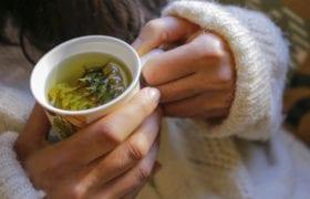 simple tea nutraphoria