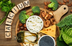 sources of calcium nutraphoria school of holistic nutrition