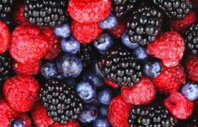Berry Ice cream Nutraphoria