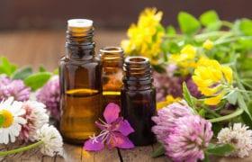 Homemade Essential Oils Nutraphoria