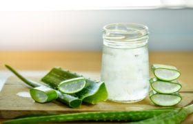 Benefits of Aloe Vera Nutraphoria