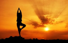 Easy Yoga Nutraphoria