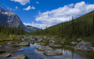 Benefits of Going Outdoors Nutraphoria