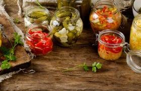 Fermented Foods Nutraphoria