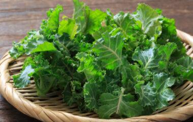 Quinoa, Kale and Bean Soup Nutraphoria