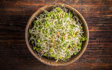 5 Green Foods Nutraphoria