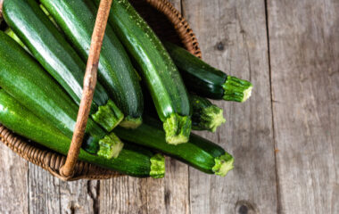 Zucchini Squares Nutraphoria