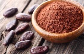 No-Bake Cacao Brownie Bars