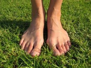 EAST TEXAS FOOT ASSOCIATES - feet in green grass