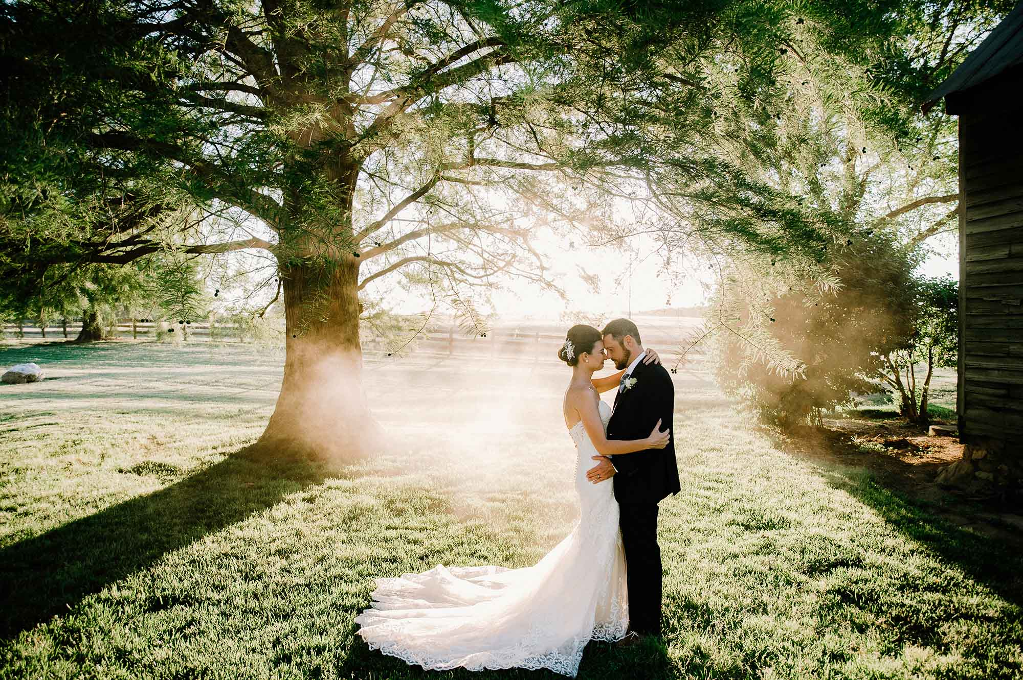 bride and groom in golden hour with fog and sunlight