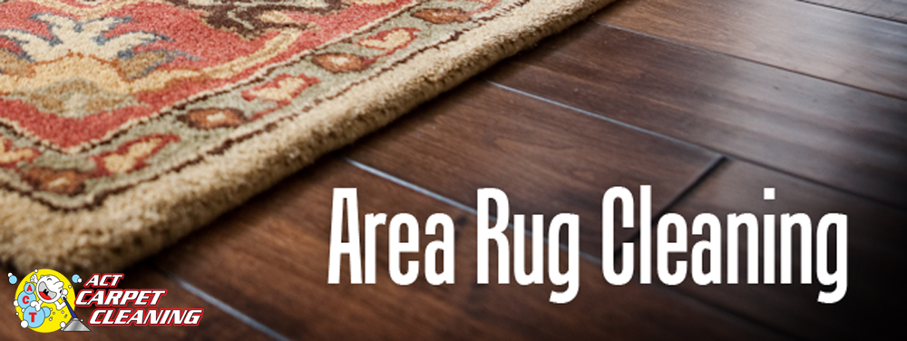 Rug Cleaning Act Carpet