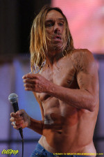 Iggy Pop - Randall's Island, NYC August 2004 | Photos by Kristin Callahan