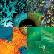 Colour Haze 'We Are'