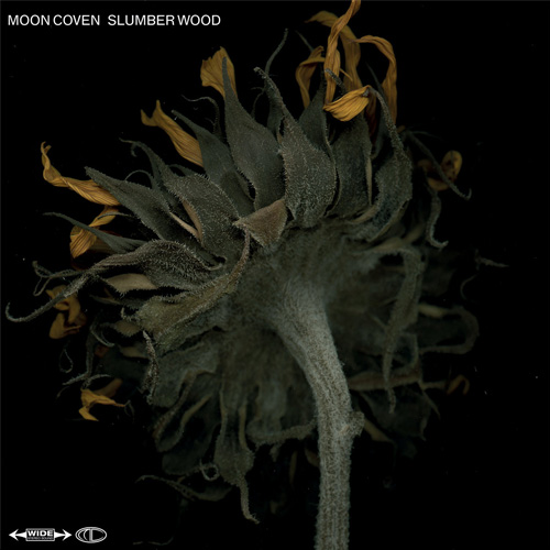Moon Coven 'Slumber Wood'