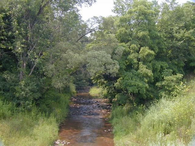 14Mile Creek July 2004