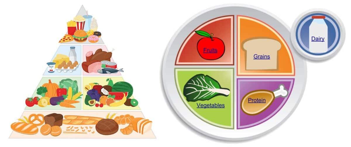 Alzein NutritionBasics Event
