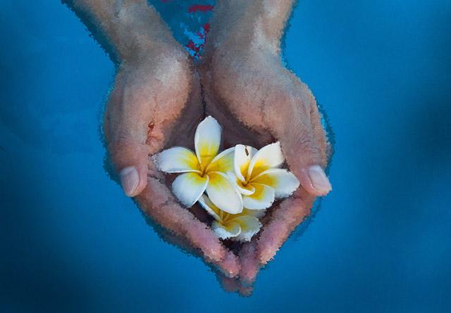 cupped-hands-flowers