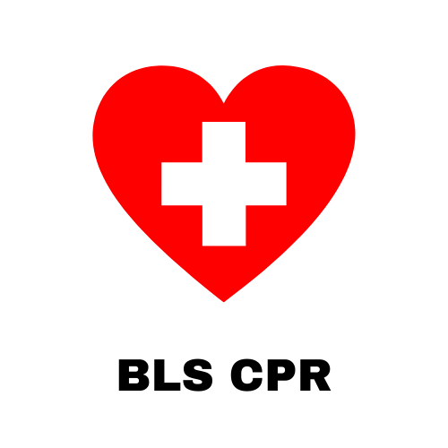 American Heart Association BLS CPR for Healthcare Providers
