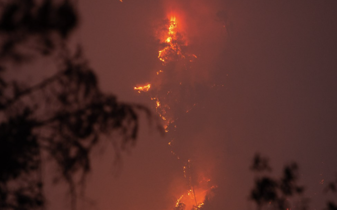 California Prepares for Wildfire; Disparity in Covid Deaths Highlight Need for Vaccine Equity