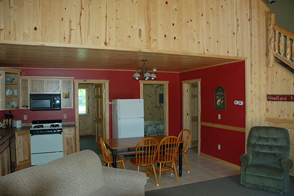 cabin-19-kitchen