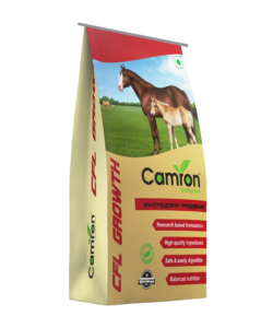 Camron's equine feed for growth.