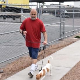 Western-Arizona-Humane-Society5