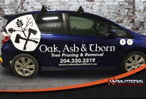 Oak, Ash & Thorn