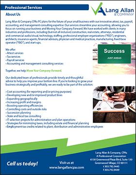 Lang Allan & Company professional services brochure