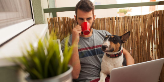 work from home man with dog