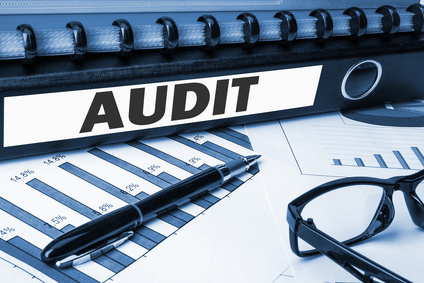 reduct audit risk