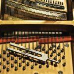 Yury Feygin Piano Tuner Amadeus Piano
