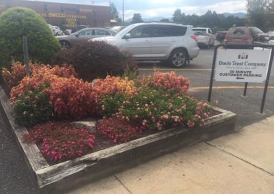 Commercial Landscaping2