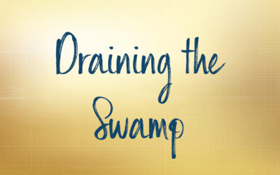 Draining the Swamp