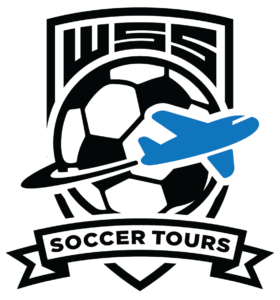 World soccer systems