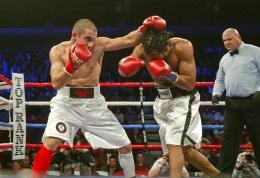 boxer 11-17