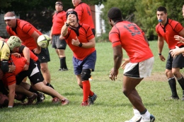rugby 11-7
