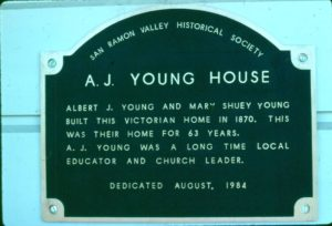 Young Plaque