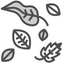 006-dry-leaves