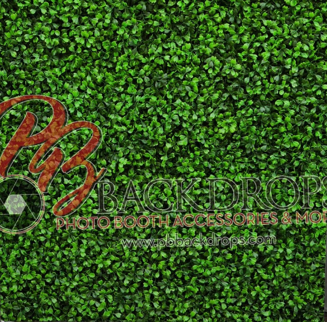 Hedge Backdrop