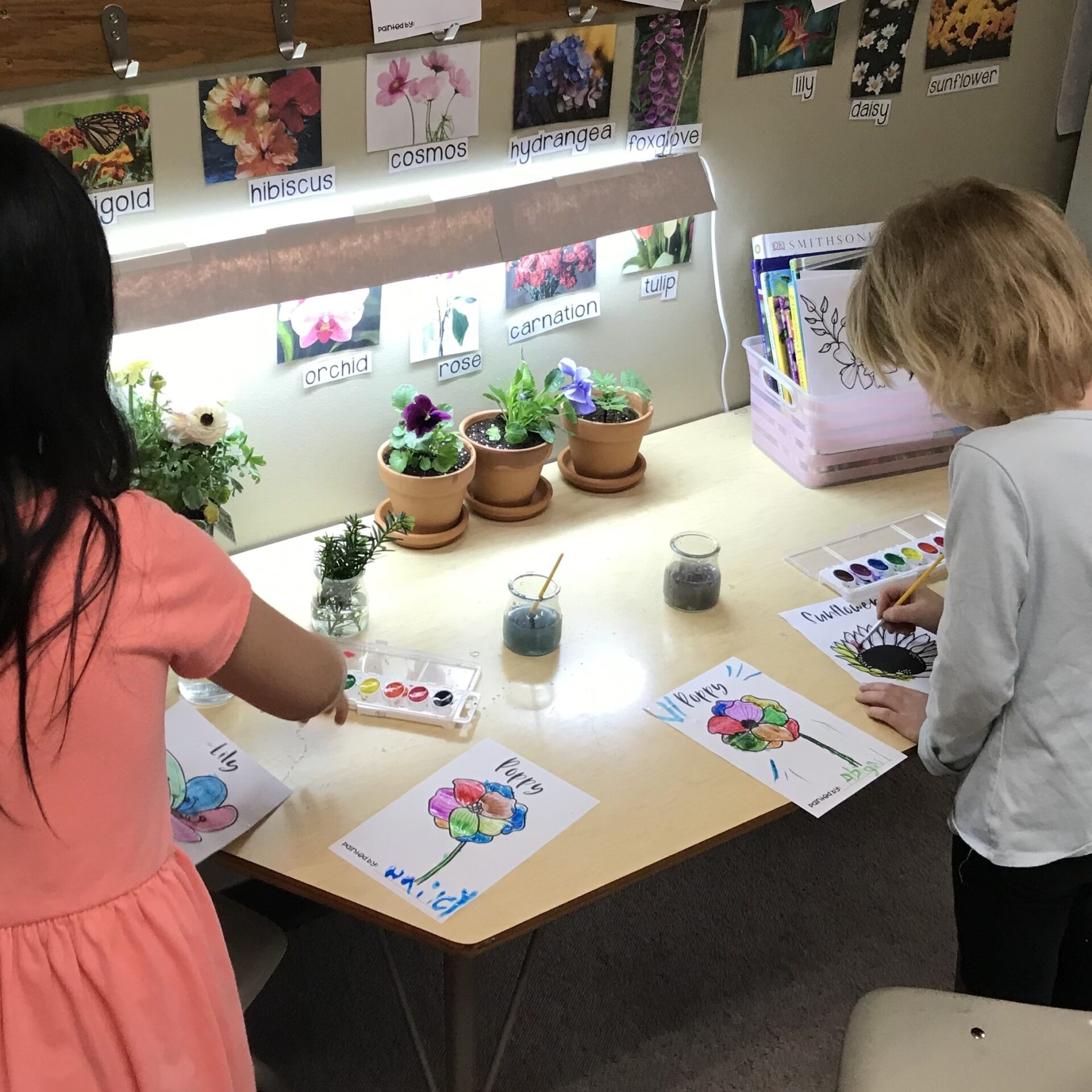 Plant Water color painting science copy