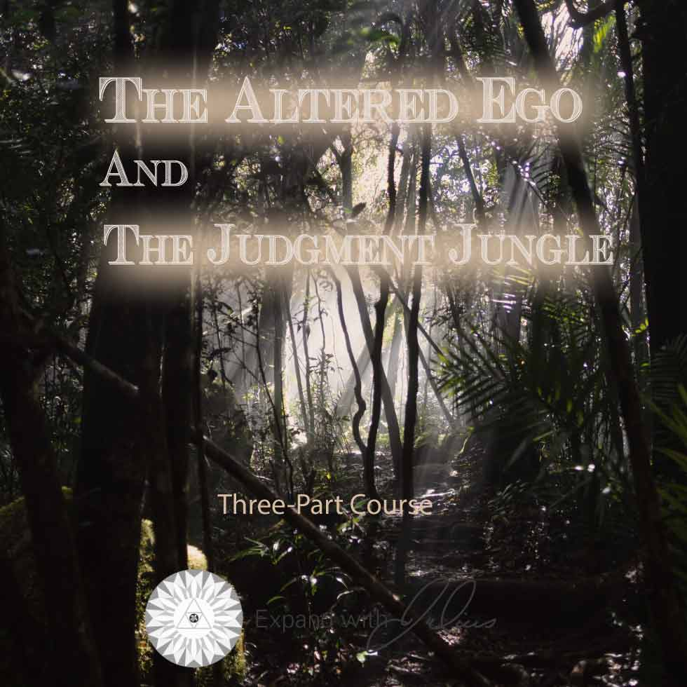 The Altered Ego and the Judgement Jungle   Expand with Julius and Xpnsion Network