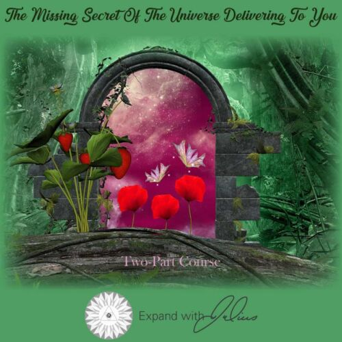 The Missing Secret of the Universe Delivering to You   Expand with Julius and Xpnsion Network