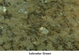 largelabradorgreen