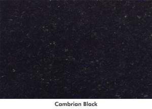 largecambrianblack